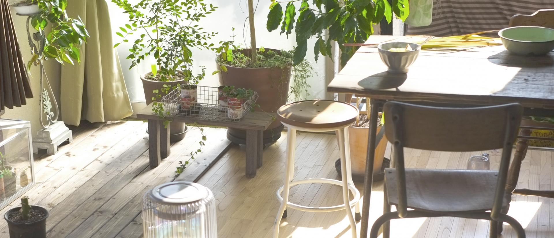えぐちの家|小松市の新築・注文住宅・庭にこだわる家づくり CREATION EGUCHI